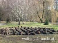 Riegel und Treibjagd in Ungarn 04-05. 01. 2019