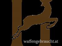 Rothirsch und Damhirschjagd in Brunft in Ungarn